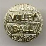 Volleyball Chenille Pin -- PC0-1H00-R Chenille Pins