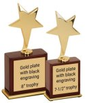 Modern Star Trophy -- EX0-302X-S Metal Trophies