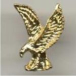 Eagle Chenille Pin -- BR0-9372-C Patriotic Awards