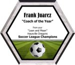 Soccer Plaque -- AF0-0SOC-C Value Plaques